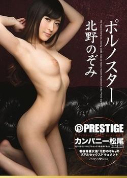 Porn Star Nozomi Kitano