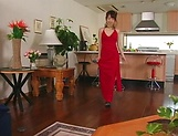 Hot MILF Hikaru Houzuki gives head and gets banged hard