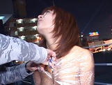 Cum on face for dazzling Asian milf Akane Mochida picture 2