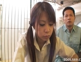 Chizuru Morill Naughty Schoolgirl Gets Her Pussy Fucked HArd By Older Guy picture 14