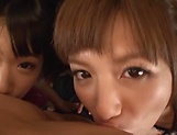 Two horny Asian teens give a sizzling POV blowjob picture 4