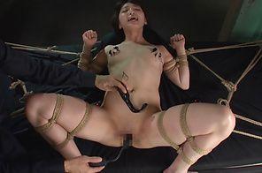 Suzuya Ichigo