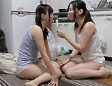 Japanese hotties are sharing passion together picture 3